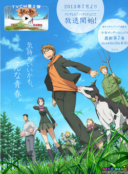 2013 Summer anime Part 3: TV anime III
