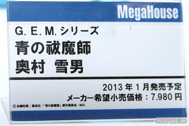 Wonder Festival 2012 [Summer] Part A3: Megahouse I